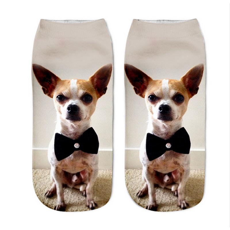 Chihuahua Bow Tie Socks