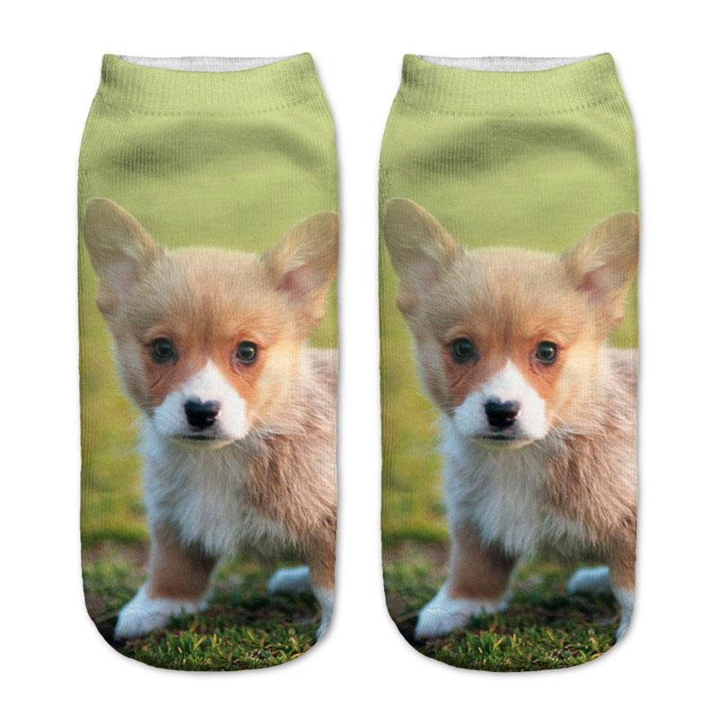 Corgi Puppy Socks