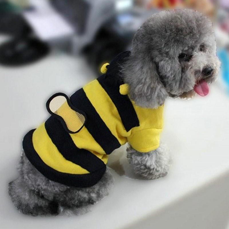 Dog Costume – Bumblebee