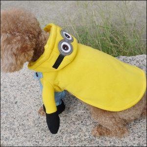 Dog Costume – Minions