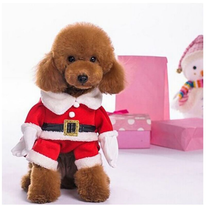 Dog Costume - Santa Claus