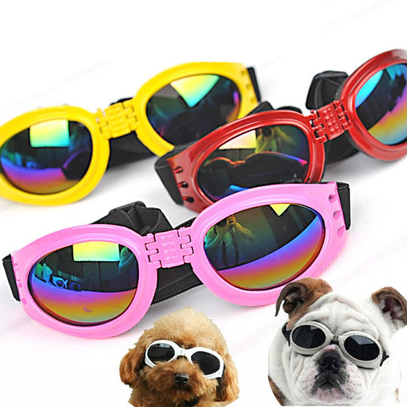 Foldable dog sunglasses