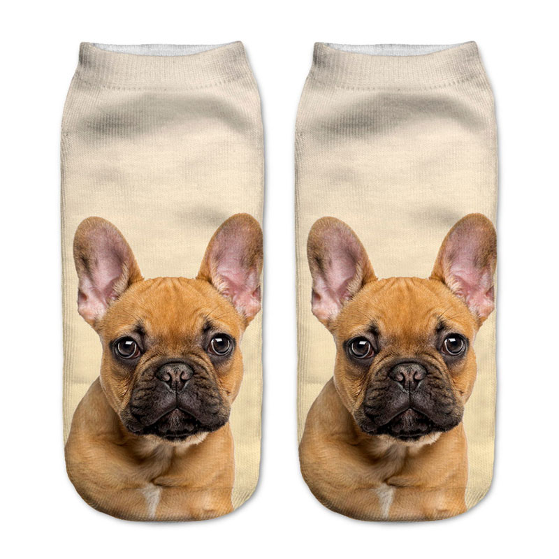 French Bulldog Puppy Socks