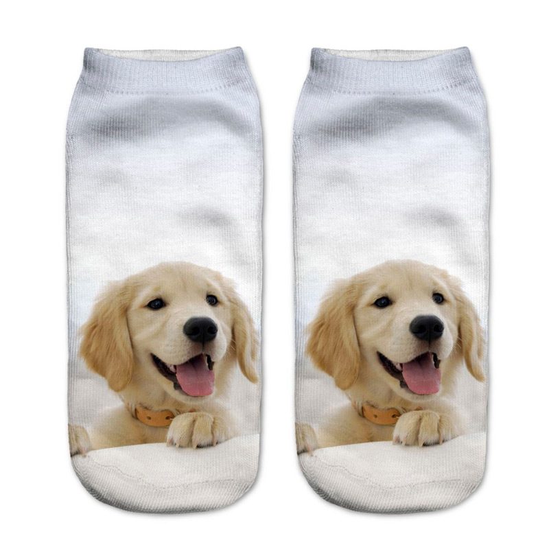 Golden Retriever Puppy Socks