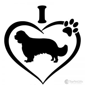 I Love My Cavalier Decal