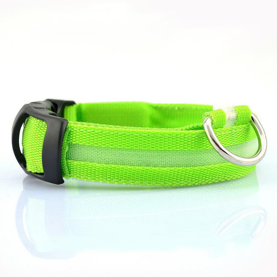 led dog collar top pet gifts. Black Bedroom Furniture Sets. Home Design Ideas
