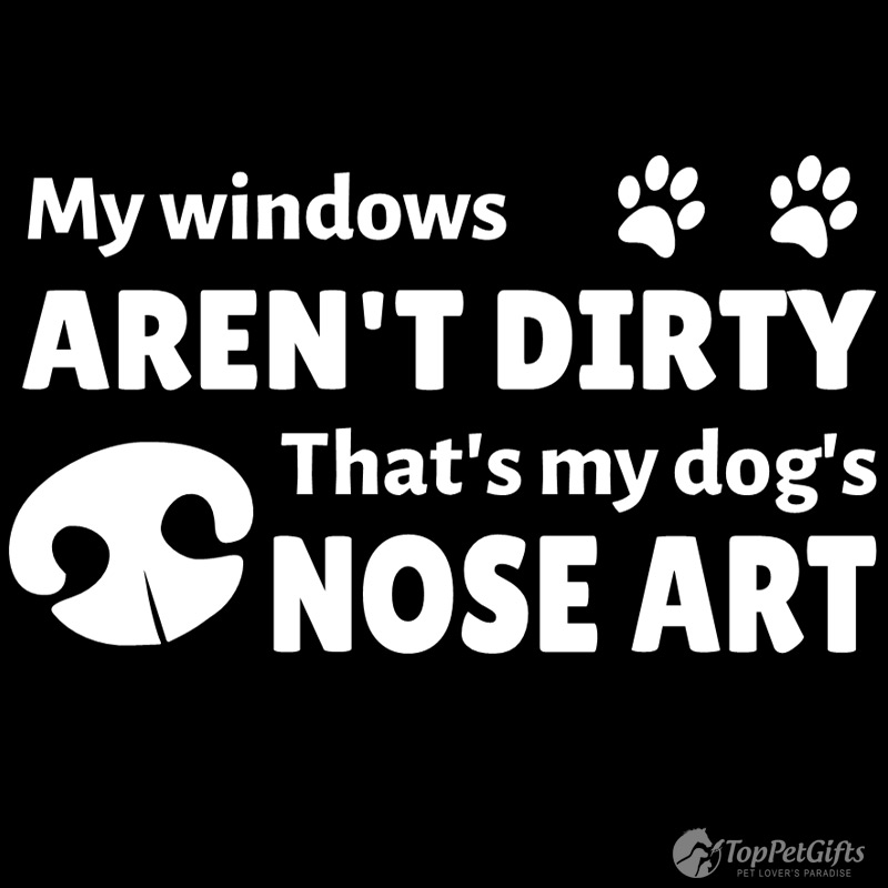 My Windows Arent Dirty Decal