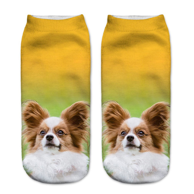 Papillon Socks