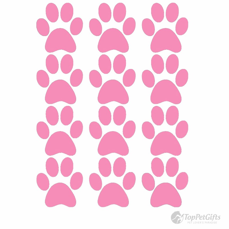 Paw Print Decals