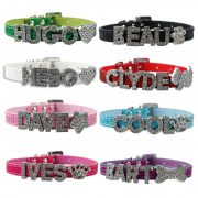 Personalized Dog Pet Puppy Cat Collar with Rhinestone Letters Charms