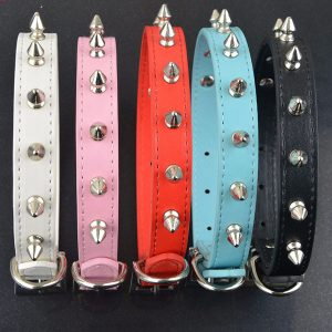 Spike Studded Collar
