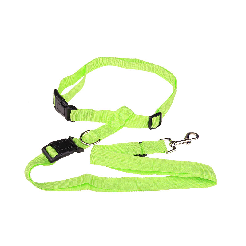 Waste running leash