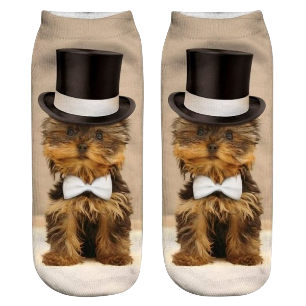 Yorkshire Terrier Socks - Top Hat