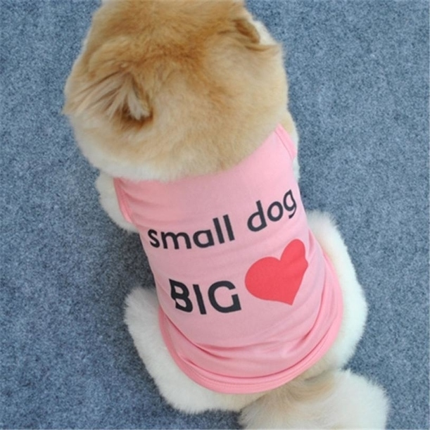 Dog Tshirt - Small Dog Big Heart